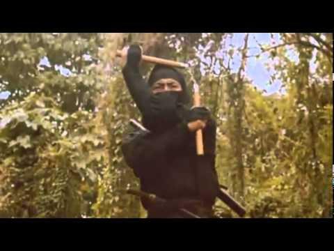 Enter The Ninja(1981)