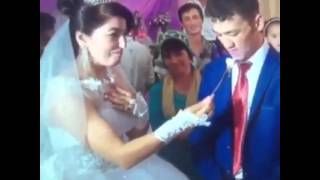 жениха кормит  невеста