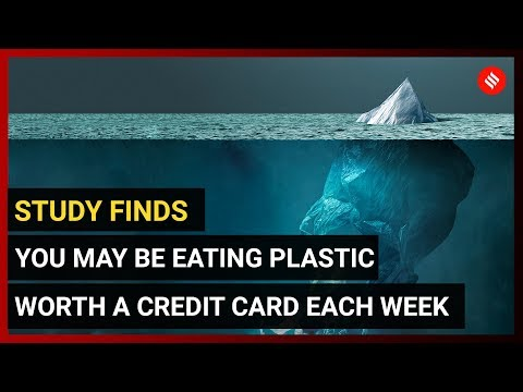 Telling Numbers: How plastic pollutes, how much waste the states generate
