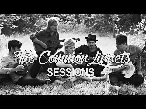 The Common Linnets - Sessions