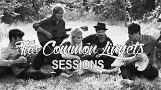 the common linnets   sessions