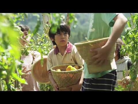 Film Koki-Koki Cilik | DIBUANG SAYANG PART 1