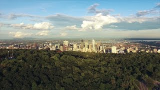 ** No Copyright Video ** Metropolis drone view [Royalty Free Video]