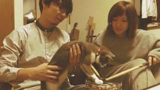 福島県のスリーピースセンチメンタルロックバンドハートフルサウンドの...