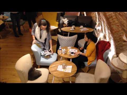 Visite De Chapristea, Le Bar à Chats De Toulouse