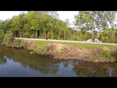BIG Fish and Nature (HD)