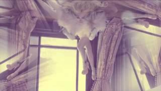 Hande Yener-Hasta ( Yağmur Savanc & Mert Aydın Remix )