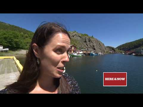 CBC NL Here & Now Thursday July 6 2017