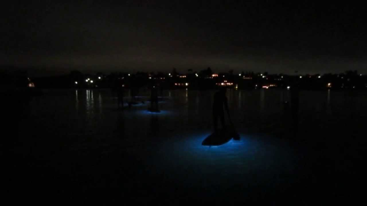 Pirate Coast Sup Night Glow Tour Newport Beach California Paddling Through Back Bay