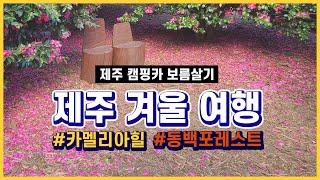 ep. 06 : 제주도 보름살기 / 제주도 겨울 동백꽃…