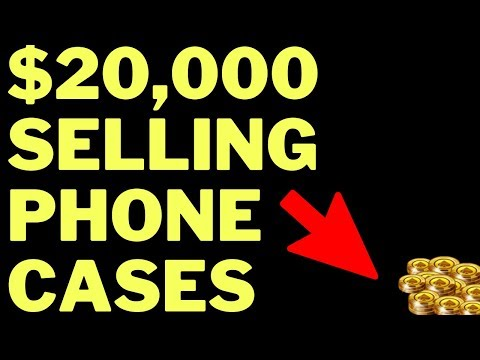 Shopify Training - $20k/month Selling iPhone Cases thumbnail