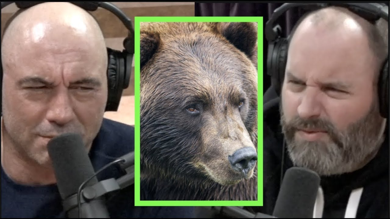 Man Had His Face Eaten Off By a Grizzly Bear w/Tom Segura ...