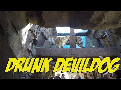 Drunk DevilDog