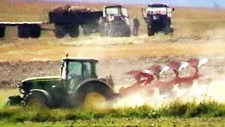 Traktory w Akcji Na Polu - Oranie Pola Po Żniwach - Maszyny Rolnicze w Akcji Na Wsi w Polsce