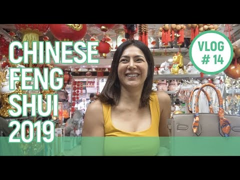 Chinese Feng Shui (2019) // Alice Dixson
