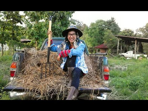 Success story of young organic farmer: Fai and her happy farm