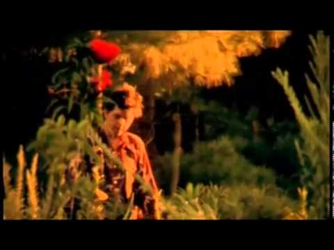 sparklehorse-sunshine-official-video-sparklehorsevideos