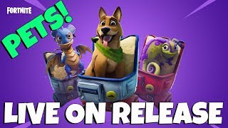 GETTING A PET DOG ON RELEASE! - Fortnite Battle Royale
