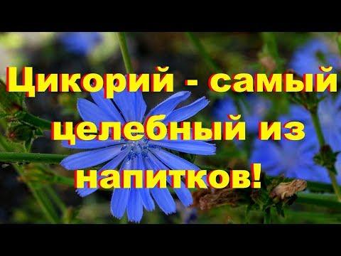 Религии и секты в России - k-
