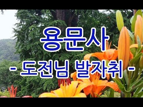 대순진리회 도전님 발자취 - 용문사