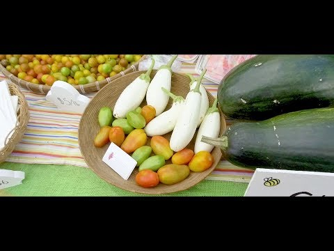 Farmers Market Event | British Virgin Islands