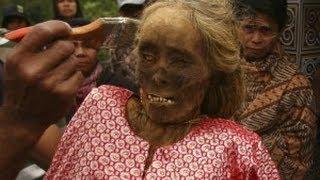 Menyeramkan Mayat Berjalan Di Ritual Manene Toraja