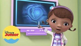 Stanley  I Momentos Mágicos I Doutora Brinquedos