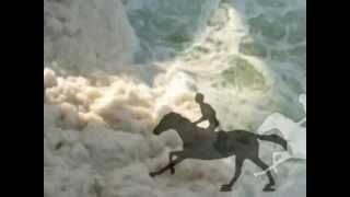 Sea Horses in Motion Thumbnail