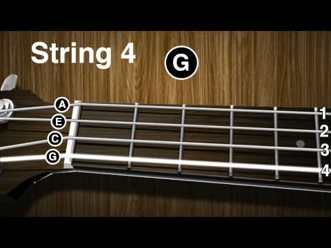 How To Tune a Ukulele: Tenor, Concert, Soprano, Standard Tuning