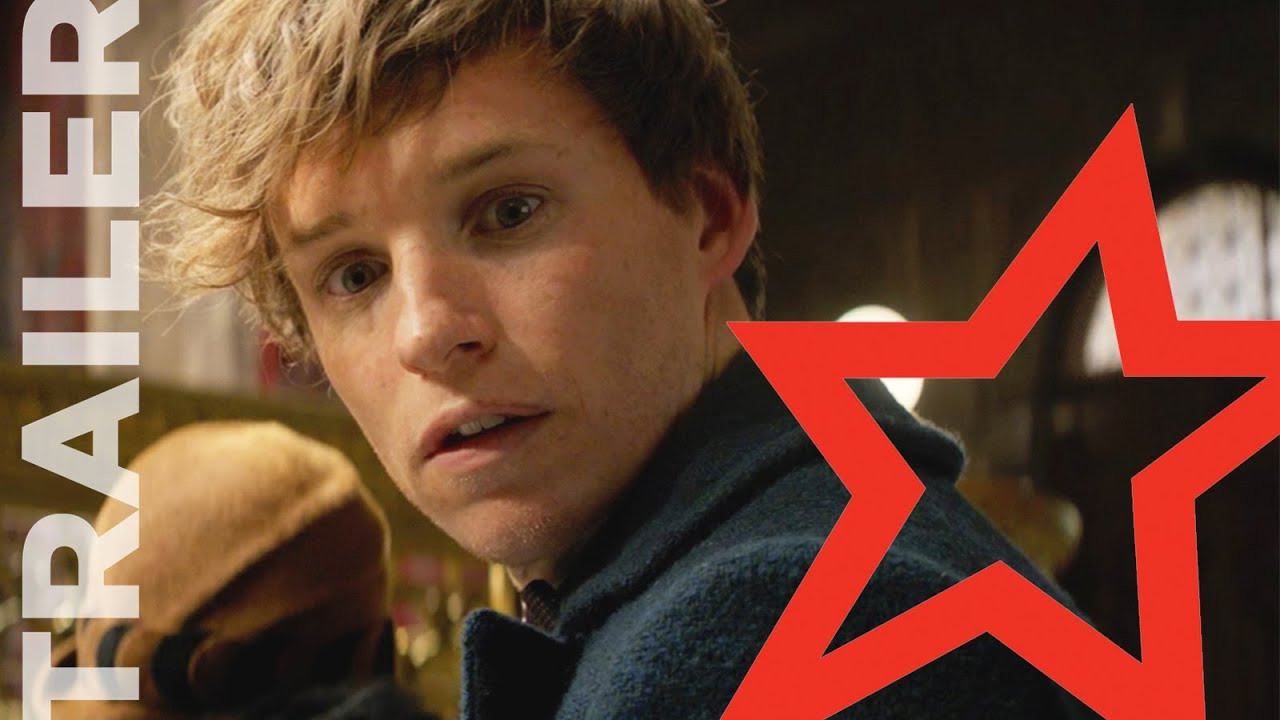 Fantastic Beasts & Where to Find Them: 5 of the Wizarding