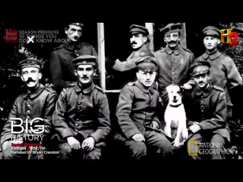 History Channel Documentary  -   TOP 10 FACTS about Adolf Hitler