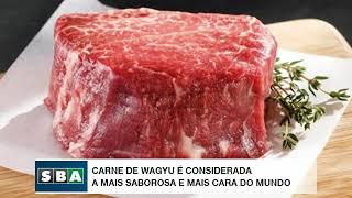Carne de Wagyu é considerada a mais saborosa e mais cara do mundo