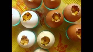 Холодные закуски мясные:Яйца фаберже