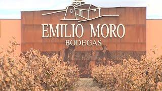 Bodegas Emilio Moro se convierte en la pyme del año en Valladolid