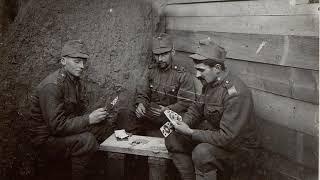 Австрійські війська в Першій Світовій Війні ! В горах Карпатах !!! WW1.