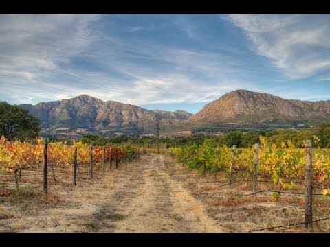 The Franschhoek Wine Valley
