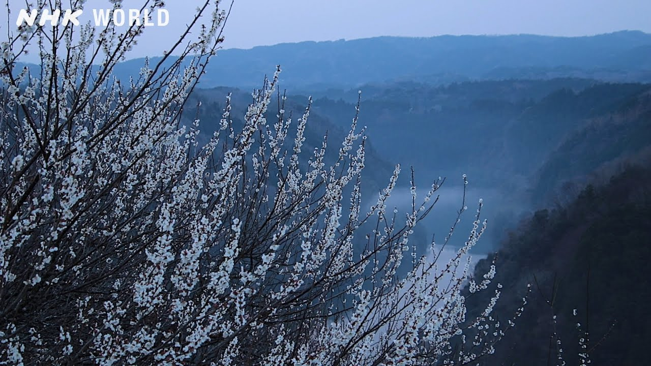 Photo of Spring is cold in Tsukigase – The 72 Pentads of Yamato – video