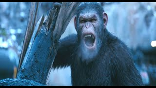 """Leave him!"" scene Caesar, Colonel & Red donkey 