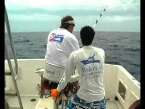 Madeira Blue Marlin Action -  Balancal Season Highlights 2008