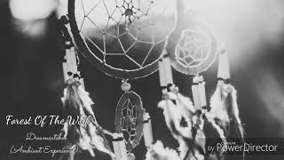 Forest Of The Wolf  -  Dreamcatcher (Ambient Experience) #Ambient #Music