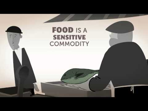 CODEX AND THE FOOD WE EAT -- ANIMATION
