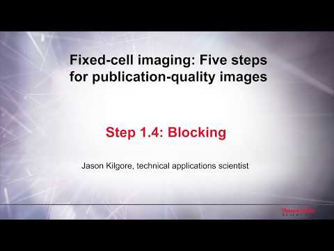 1.4 Blocking–Fixed Cell Imaging: 5 Steps For Publication-quality Images