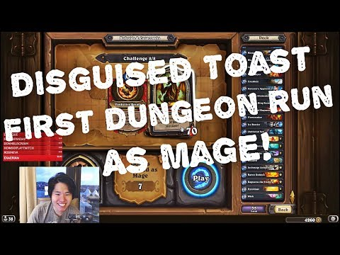 Disguised Toast First Dungeon Run as Mage! All bosses defeat