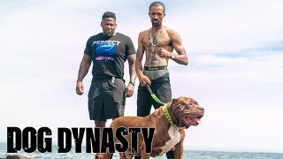 Meet Shadow – Hulk's Personal Bodyguard | DOG DYNASTY