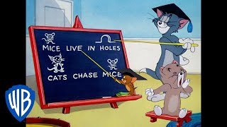 Tom & Jerry: Tom's School for Catching Mice thumbnail