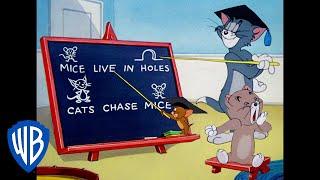 Tom & Jerry | A Lesson From Professor Tom! | Classic Cartoon | WB Kids