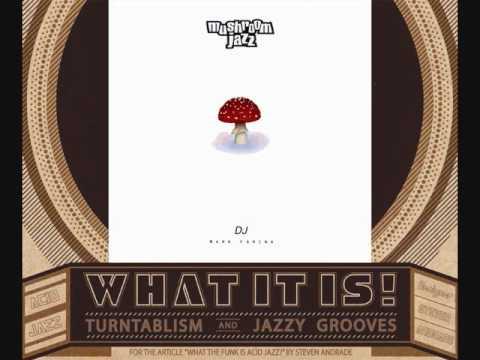 Acid Jazz (Turntablism) 1996