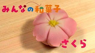 みんなの和菓子「さくら」 和菓子作りに挑戦できる手づくりキットとこのビデオで、あなたを和菓子に夢中にさせます!