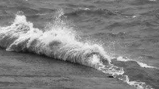 andrs calamaro biromes y servilletas grabaciones encontradas 3