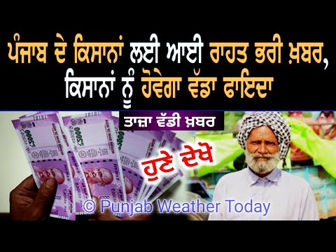 punjab news today | punjab news latest today | punjabi news | punjab weather | punjab news live